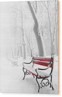 Red Bench In The Snow Wood Print by  Jaroslaw Grudzinski