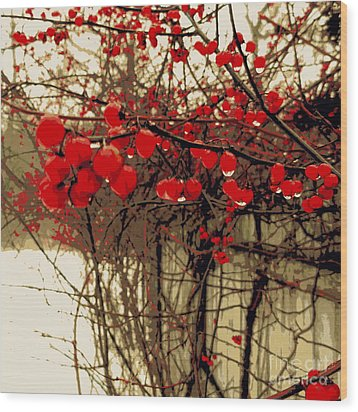 Red Berries In Winter Wood Print