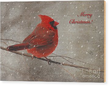 Red Bird In Snow Christmas Card Wood Print by Lois Bryan