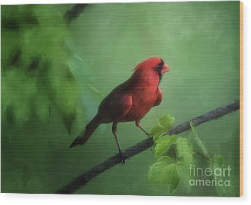 Wood Print featuring the digital art Red Bird On A Hot Day by Lois Bryan