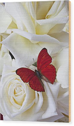 Red Butterfly On White Roses Wood Print