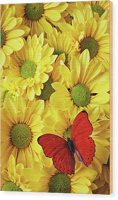 Red Butterfly On Yellow Mums Wood Print by Garry Gay