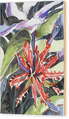 Red Cape Plumbago  Wood Print by Mindy Newman