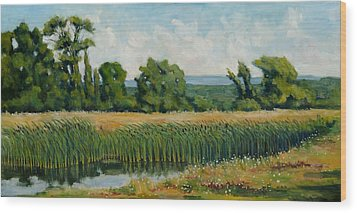 Red Cattails On Zion Wood Print by Robert James Hacunda