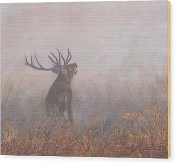Wood Print featuring the painting Red Deer Stag Early Morning by David Stribbling