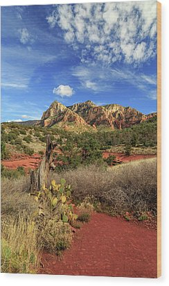 Red Dirt And Cactus In Sedona Wood Print by James Eddy