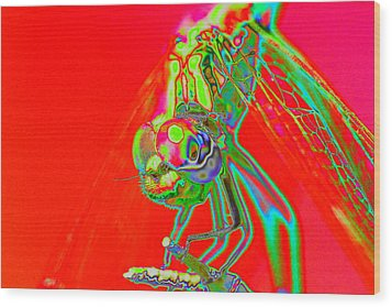 Red Dragon Wood Print