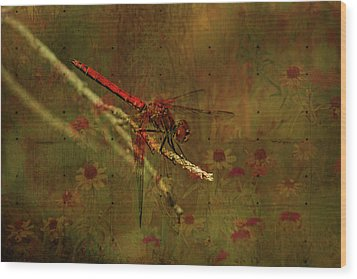Red Dragonfly Dining Wood Print by Bonnie Bruno