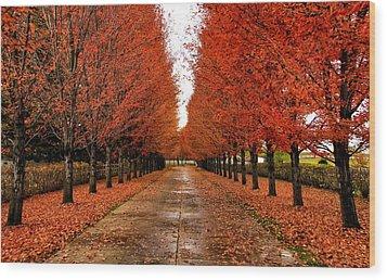 Red Drive Wood Print