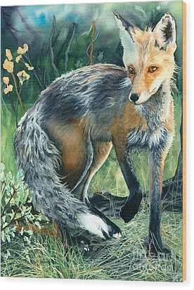Red Fox- Caught In The Moment Wood Print by Barbara Jewell