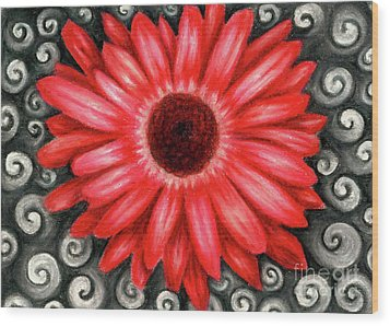 Red Gerbera Daisy Drawing Wood Print