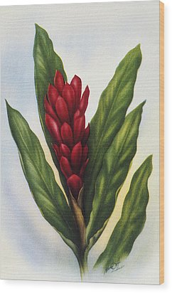 Red Ginger Wood Print by Hawaiian Legacy Archive - Printscapes