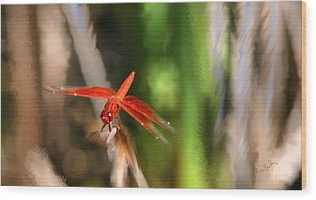 Red Heart Dragonfly Wood Print