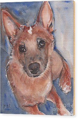 Red Heeler Pup Wood Print by Maria's Watercolor
