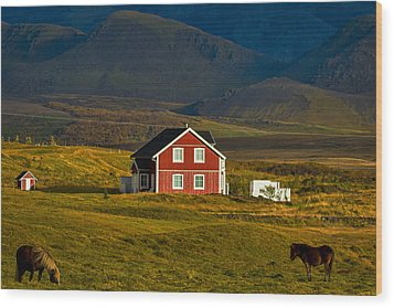 Red House And Horses - Iceland Wood Print