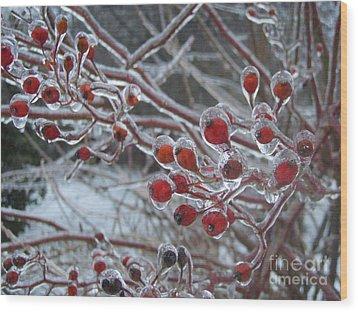 Red Ice Berries Wood Print by Kristine Nora