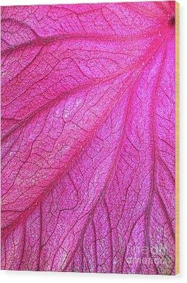Red Leaf Arteries Wood Print