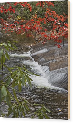 Red Leaf Falls Wood Print