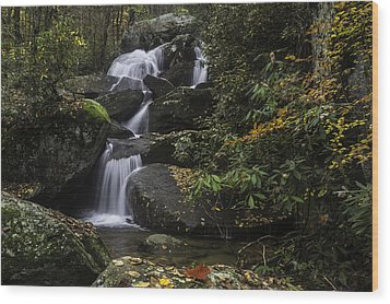 Red Leaf Waterfalls Wood Print