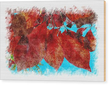 Wood Print featuring the photograph Red Leaves by Jean Bernard Roussilhe