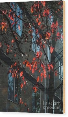 Wood Print featuring the photograph Red Leaves by Yulia Kazansky