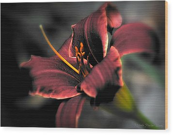 Wood Print featuring the photograph Red Lilly2 by Michaela Preston