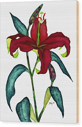 Red Lily Wood Print by Stephanie  Jolley