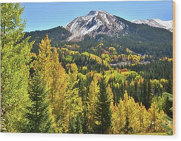 Wood Print featuring the photograph Red Mountain Fall Color by Ray Mathis