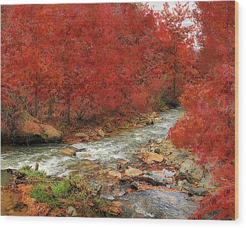 Red Oak Creek Wood Print