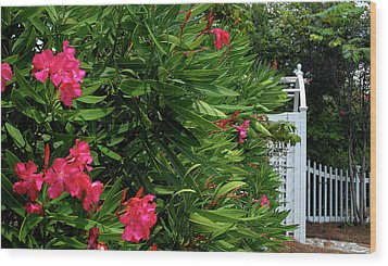 Wood Print featuring the photograph Red Oleander Arbor by Marie Hicks