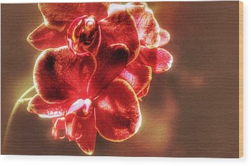 Wood Print featuring the photograph Red Orchid by Isabella F Abbie Shores FRSA