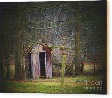 Red Outhouse Wood Print