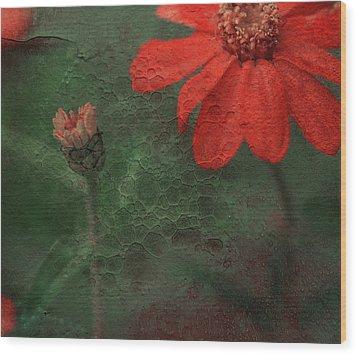 Red Passion... Wood Print by Juliana Nan