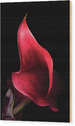 Red Passion On Black Wood Print