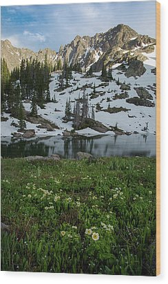 Wood Print featuring the photograph Red Peak And Willow Lake by Aaron Spong
