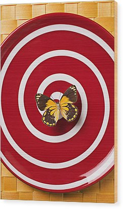 Red Plate And Yellow Black Butterfly Wood Print by Garry Gay