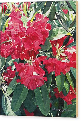 Red Rhododendrons Of Dundarave Wood Print by David Lloyd Glover