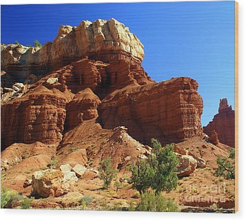 Red Rock 4 Wood Print by Marty Koch