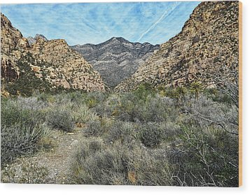 Wood Print featuring the photograph Red Rock Canyon - Nevada by Glenn McCarthy Art and Photography
