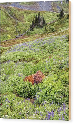 Wood Print featuring the photograph Red Rock Of Rainier by Pierre Leclerc Photography