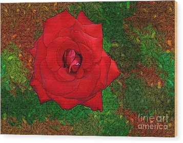 Red Rose 2 Wood Print by Jean Bernard Roussilhe