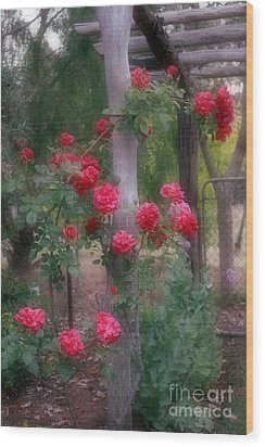 Red Rose Dream Wood Print