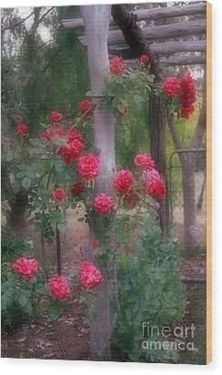 Red Rose Dream Wood Print by Elaine Teague