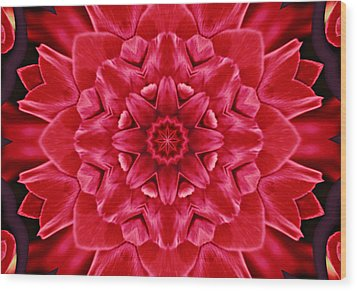 Red Rose Kaleidoscope Wood Print by Cathie Tyler