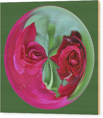 Red Rose Orb Wood Print by Bill Barber