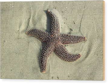 Red Sea Star Wood Print