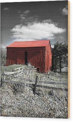Red Shack Landscape Wood Print by Joan  Minchak