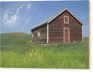 Red Shed Wood Print by Melisa Meyers
