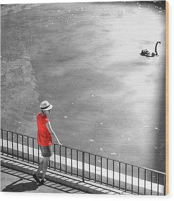 Red Shirt, Black Swanla Seu, Palma De Wood Print by John Edwards