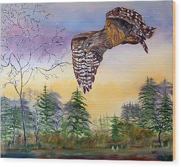 Red Shouldered Hawk Wood Print by Mikki Alhart